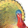 view and print vintage I'm a Turkey Survivor Thanksgiving coloring Bookmark
