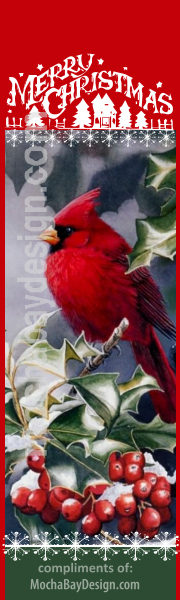 Vintage Cardinal bird on holly berry branch peacefully watching for holiday activity, with text: Merry Christmas