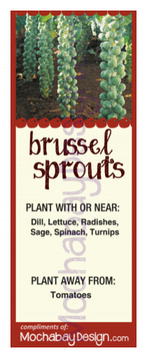 Printable Brussel Sprouts Vegetable Companion Planting Bookmark