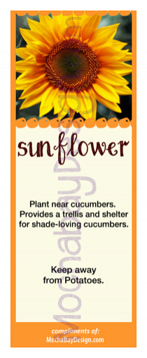 photograph regarding Printable Sunflower named Printable Sunflower Partner Planting Bookmark
